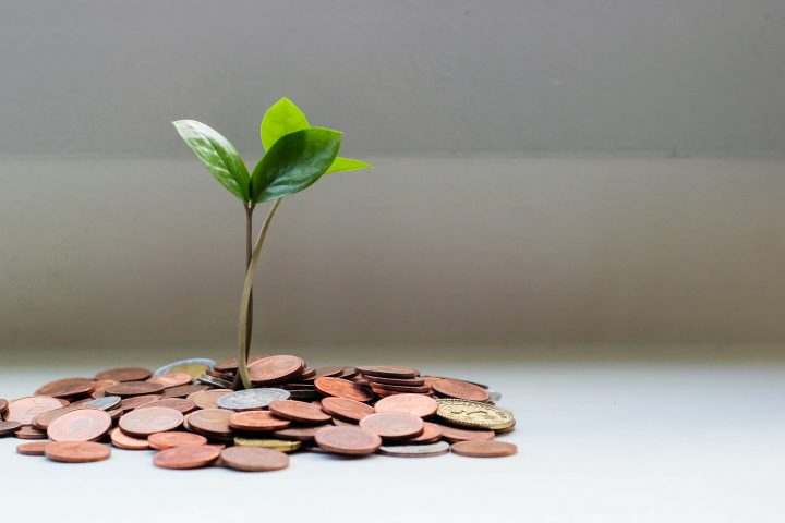 sprouting coins